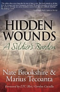 Hidden Wounds: A Soldier's Burden, a historical fiction novel,
